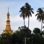 pagoda_thumb