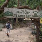 Baha's Camp
