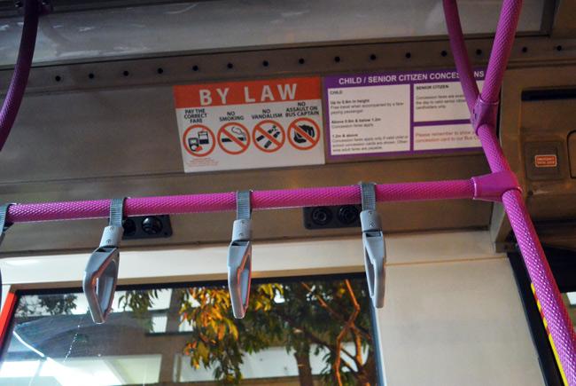 no assault on bus captain