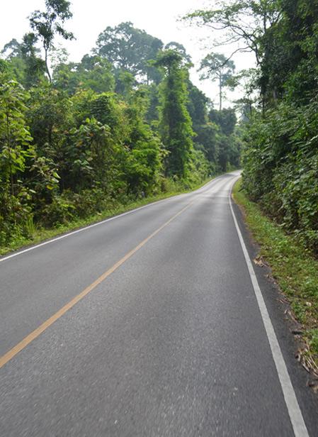 Khao Yai National Park Tour Cost